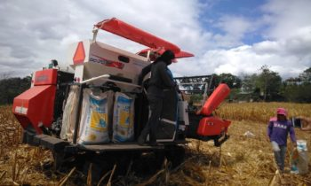 Corn Combine Harvester Arrives at Lingion