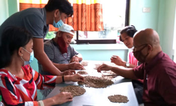 COFFEE SORTING AND GRADING