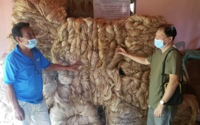 ABACA ENTERPRISE IN MISORET ARC CLUSTER TAKES-OFF HIGH IN THE MARKET